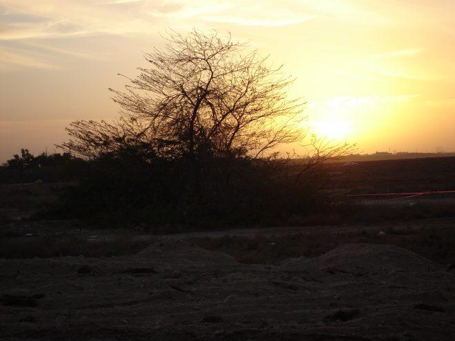صورة للغروب في الكويت 2008