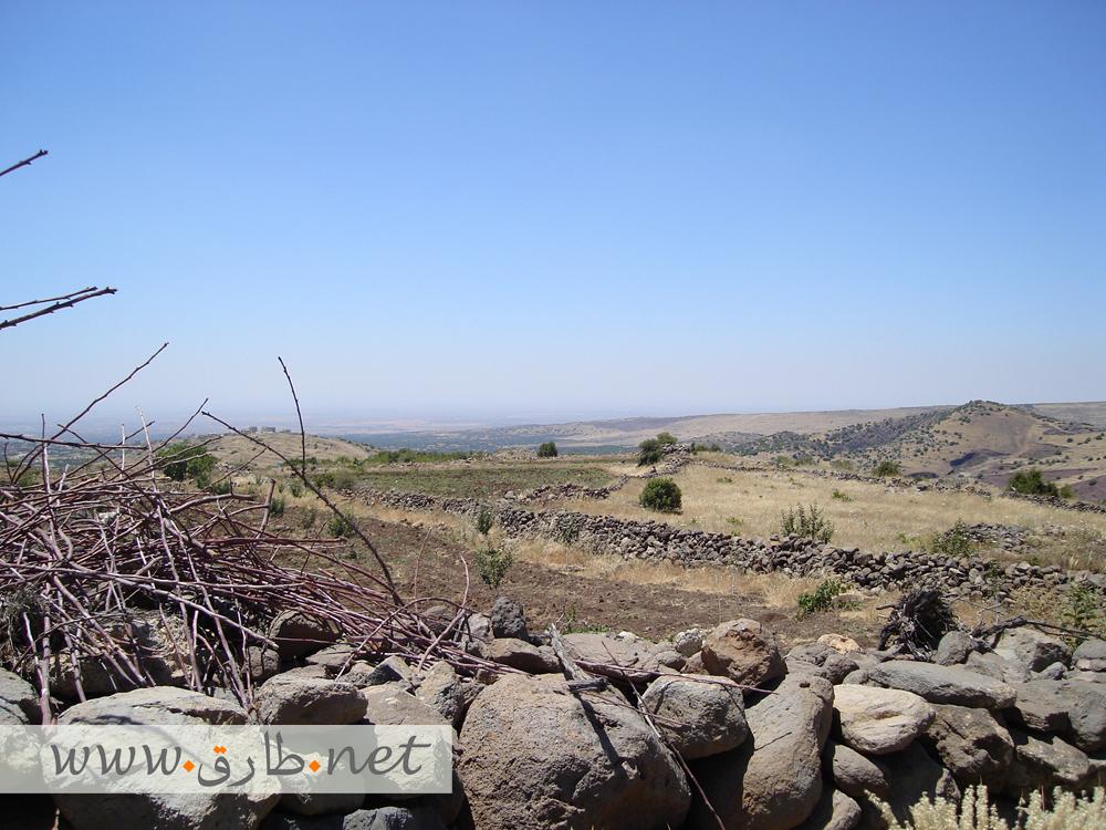 صورة من جبل قنوات تبين جمال طبيعة هذه المنطقة الجبلية