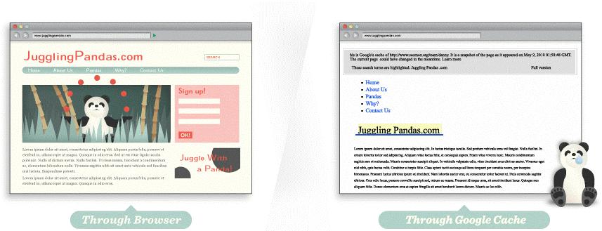 مثال عن كيفية تحسين صداقة محركات البحث عند استخدام الصور